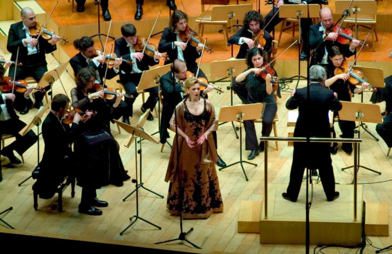 Orquesta de solistas y amigos solistas